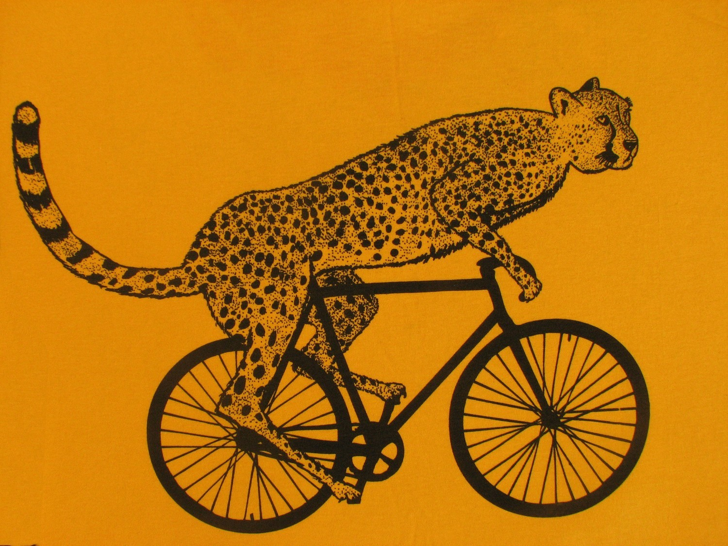 cheetah on a bike with cycling express discount codes